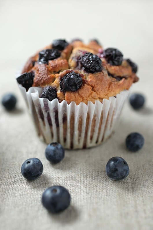 blueberry-muffin-graded-bright-2797